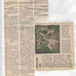 avis 4